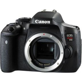Canon Rebel T6i (entry level)